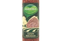 salam-banatean-1