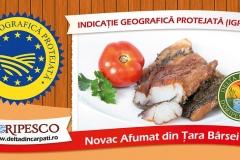 Doripesco - Banner 2 -fata-Curte Restaurant Casa Pastravuluii- 8000x4000mm