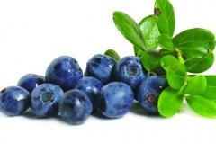 Ecofruct blueberries